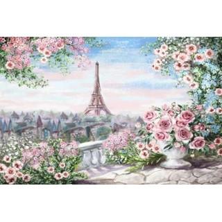 Pictura pe numere - Vedere din Paris